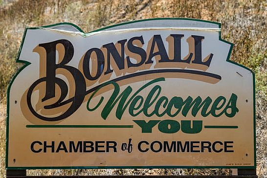 Bonsall1